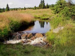 Potok u Jizerky
