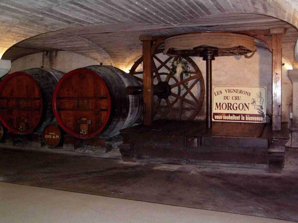 Beaujolais - Morgon