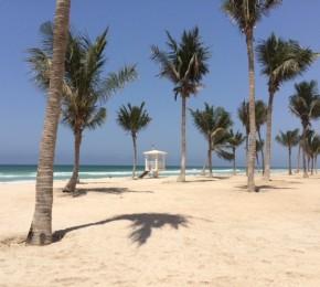 Rotana Salalah Resort4