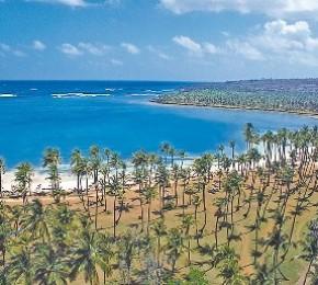 grand-paradise2